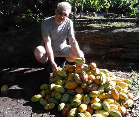 Recherche de matières premières, fèves de cacao