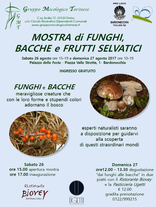 Mostra di funghi bacche e frutti selvatici