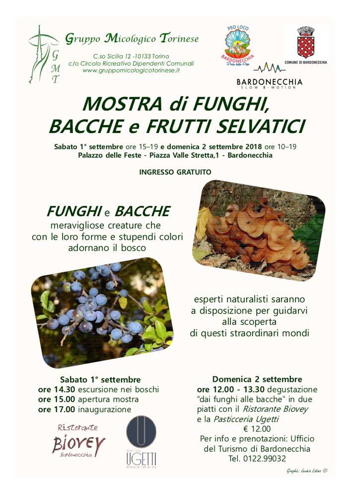 """Degustazione """"dai funghi alle bacche"""" a Bardonecchia"""